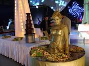 Шоколадный фонтан в аренду на корпоративную вечеринку